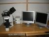 Optični mikroskop